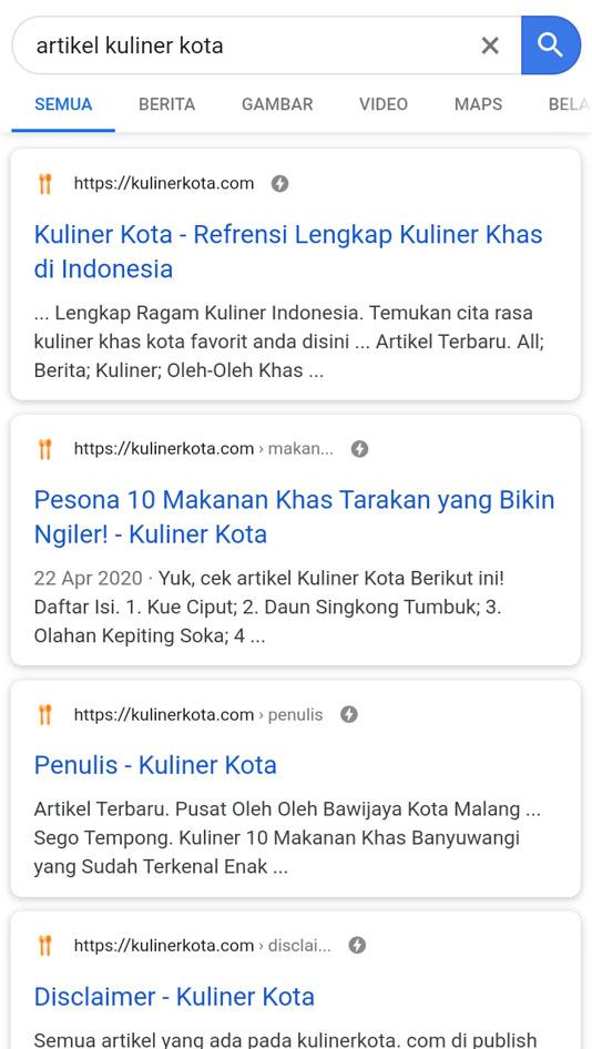 website sesudah google amp