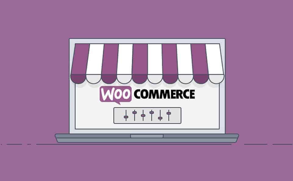 woocommerce wp plugin